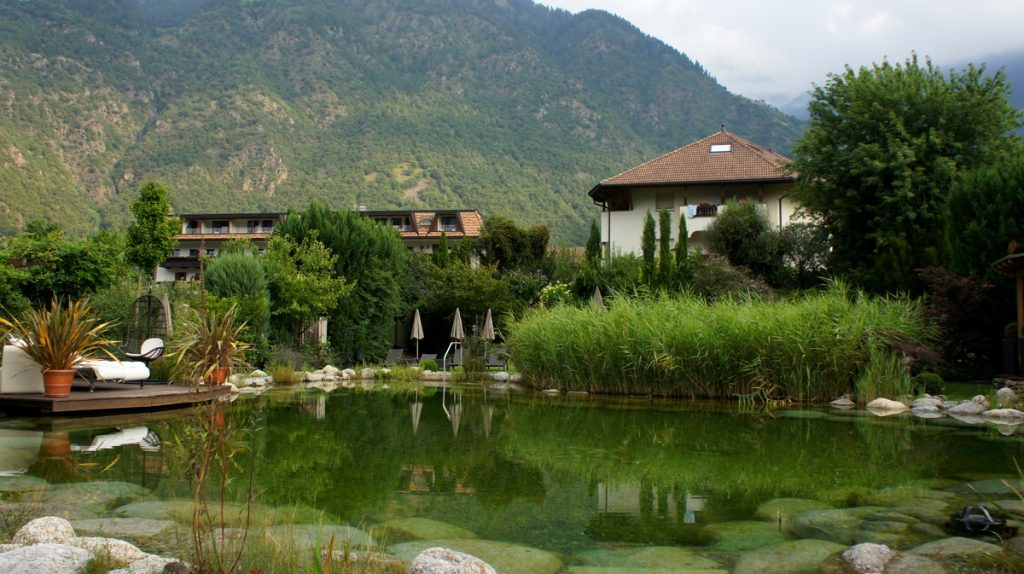 Unser Lieblingsplatz, der wunderschöne Schwimmteich